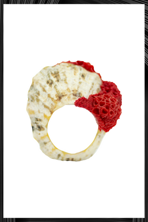 Red Stripped Shell Ring
