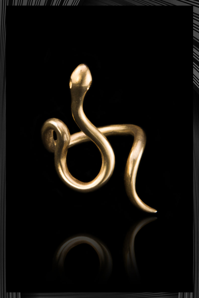Wavy Snake Ring | Free Shipping - Quick Delivery