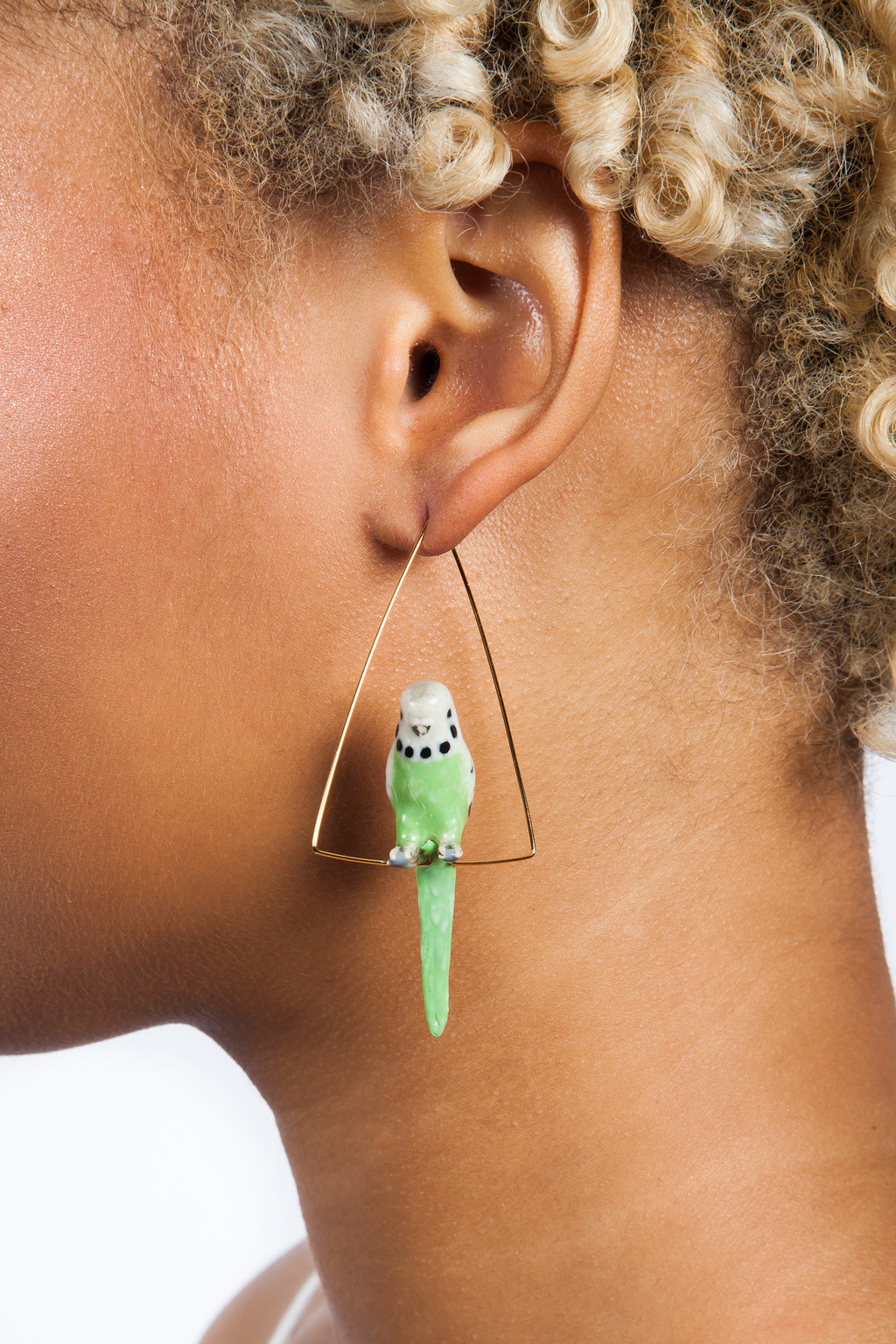 Parakeet Triangle Earrings | Free Delivery - Quick Shipping