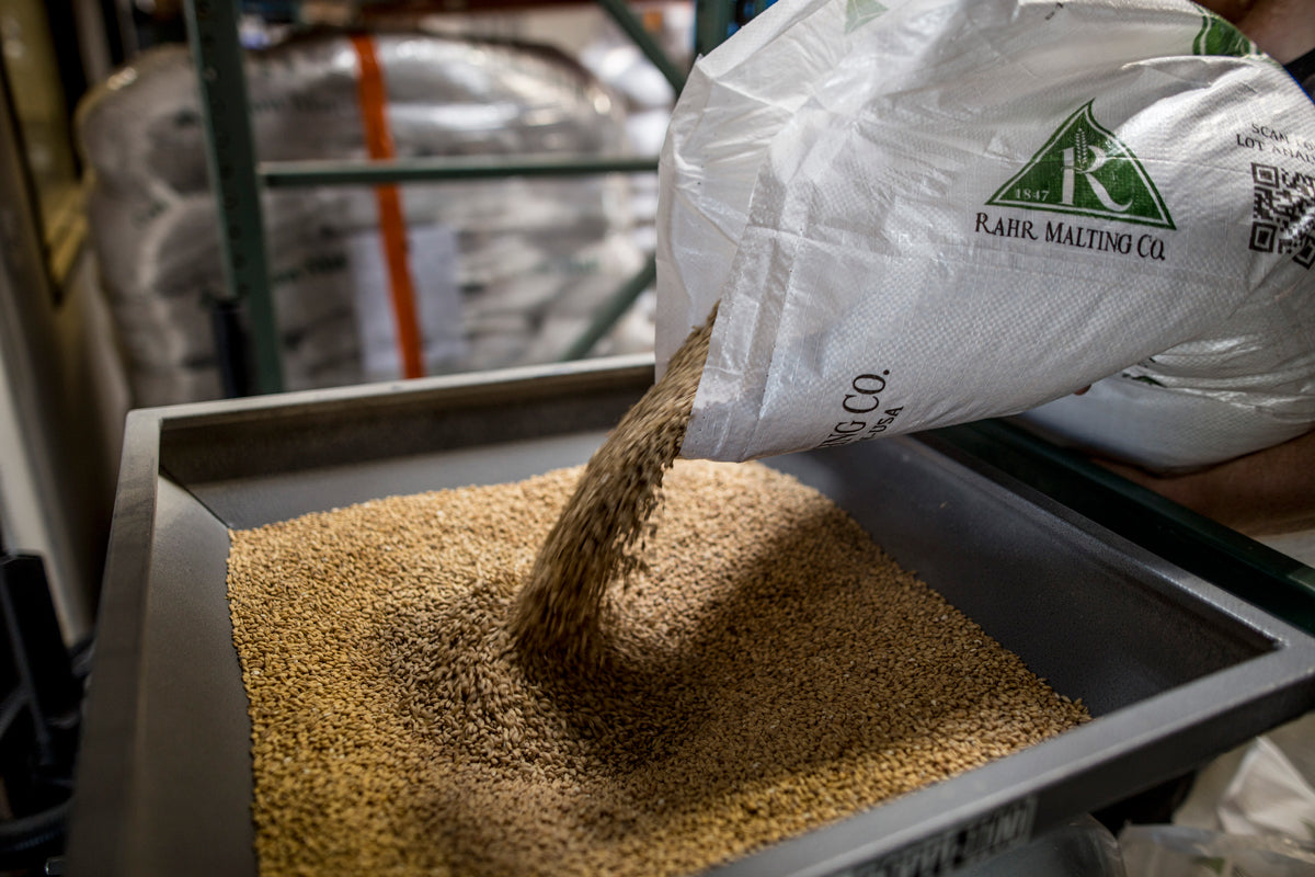 Brewing process grain