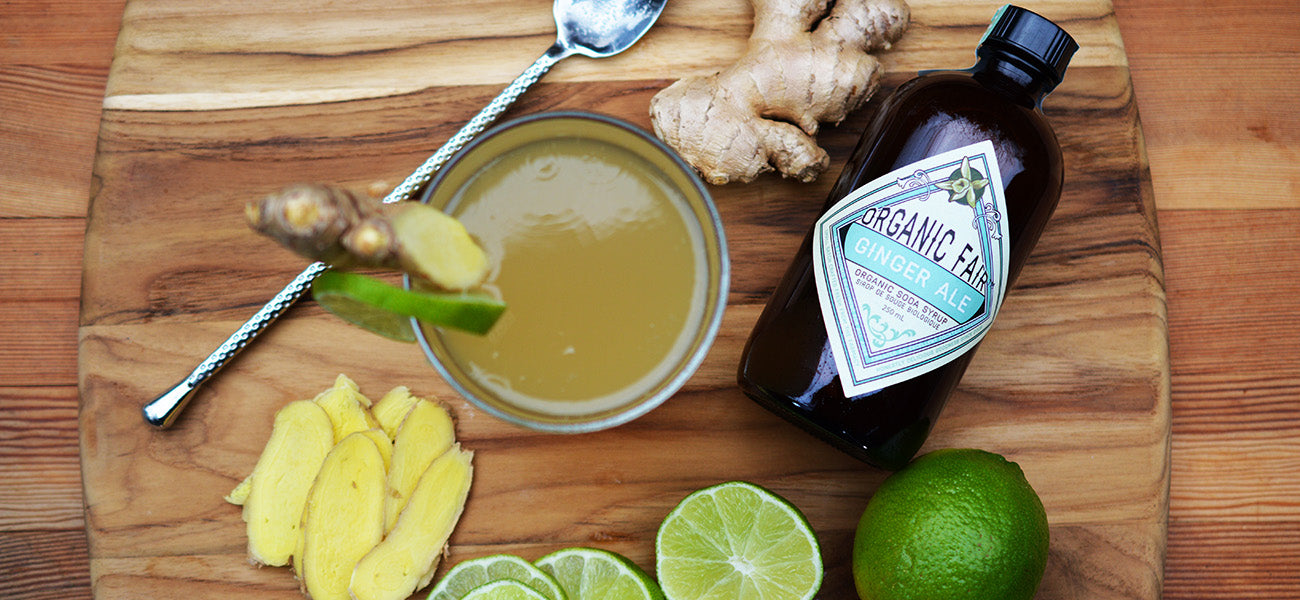 organicfair ginger ale soda syrup with ingredients