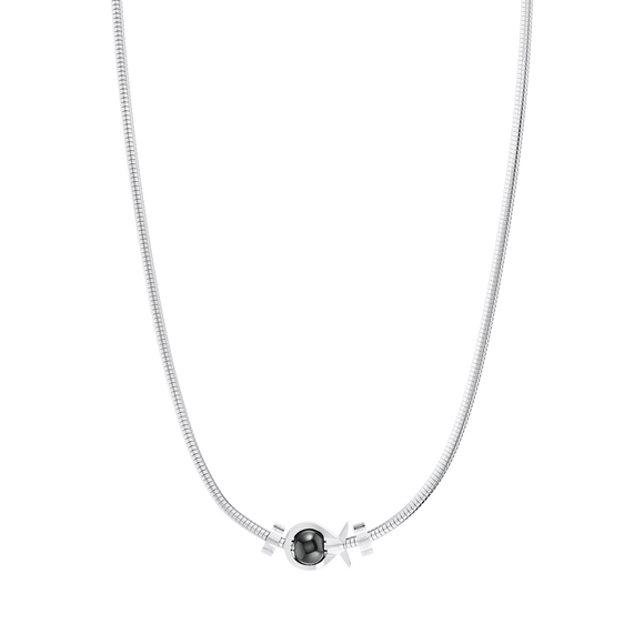 Phiiish Charm Neclace in Premium Stainless Steel (316L) with 1 Magnetite Fish Charm