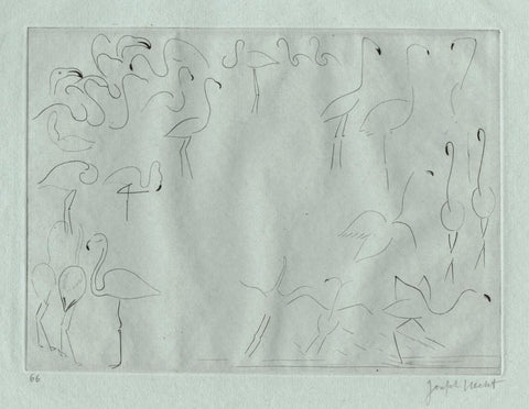 Joseph Hecht - Croquis d'Animaux - Flamants Roses - Flamingoes