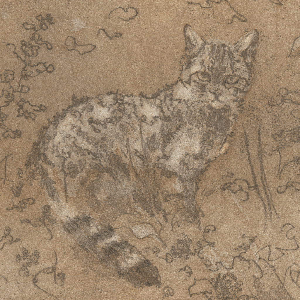 Anna Jeretic - Chat de la Foret - cat in flowers - etching
