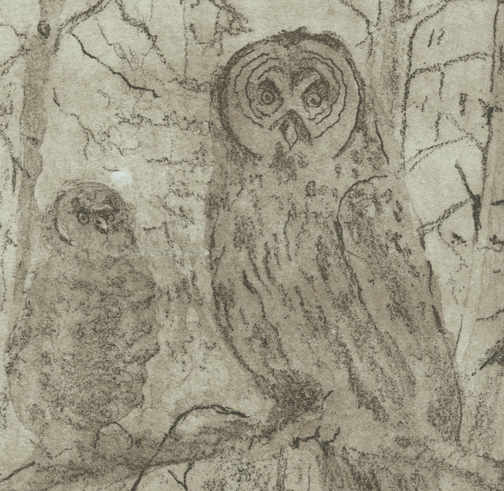 Anna Jeretic - Owl - black and white - soft-ground etching