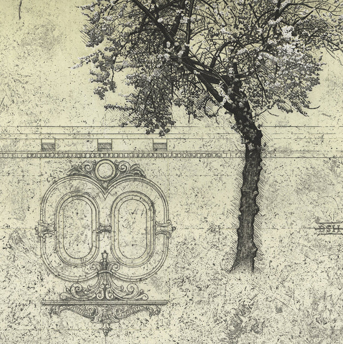 David Smith-Harrison - Plum Tree III - etching and aquatint - architecture