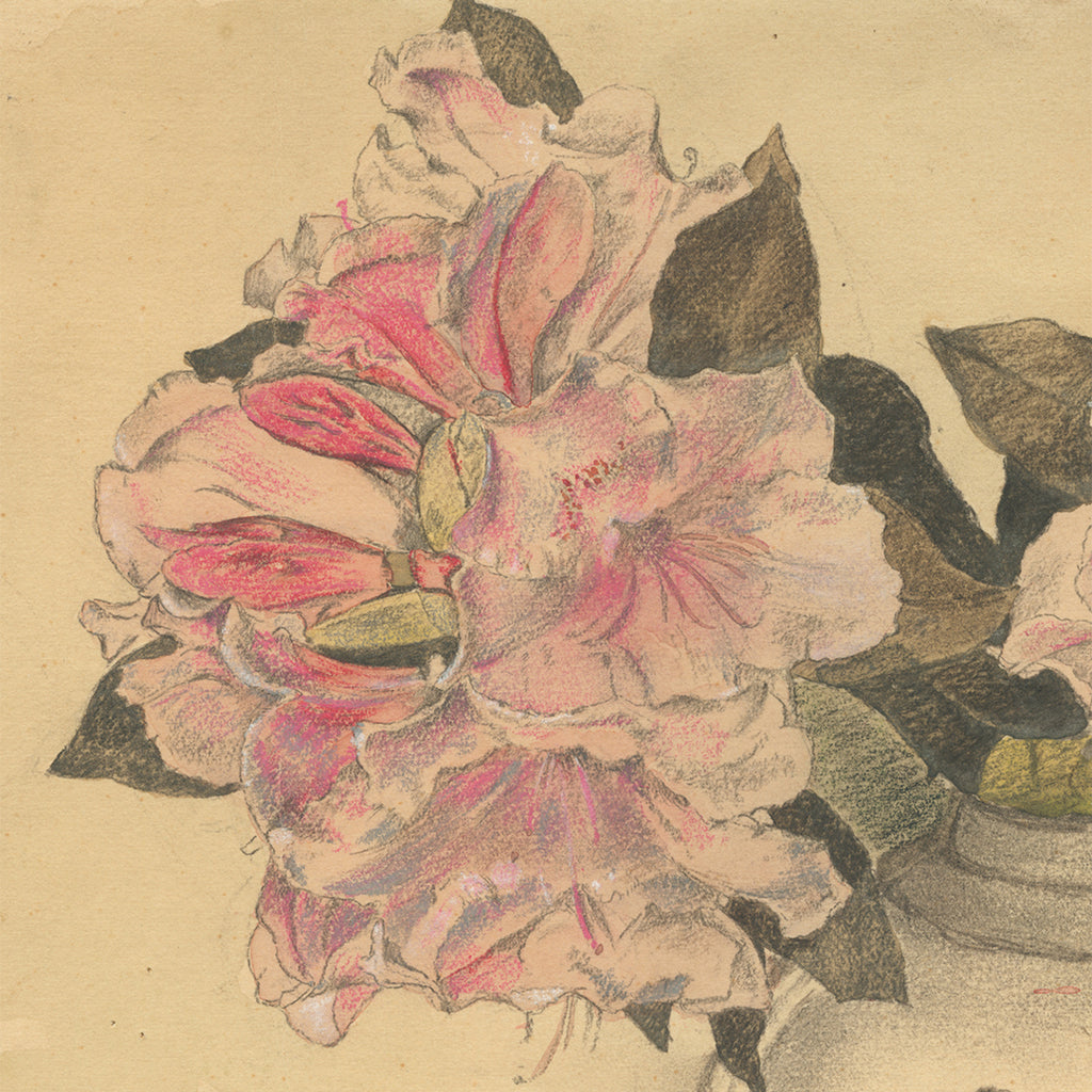 Frans Everbag - Azalea Flowers in a Chinese Vase - pencil watercolor - detail