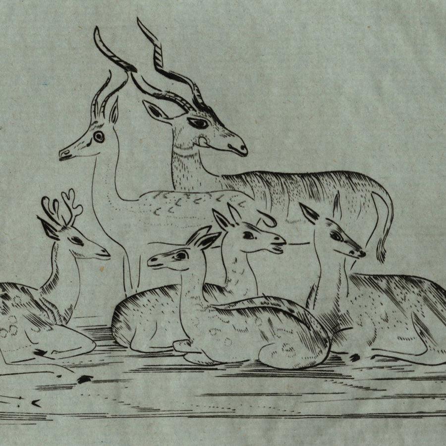 Joseph Hecht Gazelle et Biches I (original French title)  Gazelles and Deer I  Engraving on Monval verdatre paper, 1930.