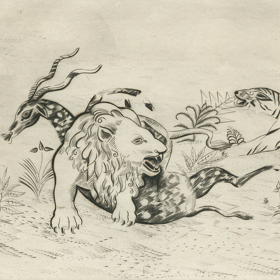 Joseph Hecht - Lion Defendant sa Proie - Lion protecting Its Prey - pure line engraving - tiger - hunt