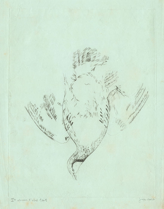 Joseph Hecht - Red Legged Partridge - main