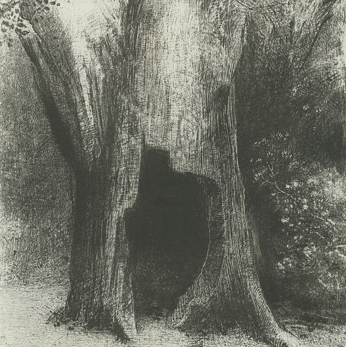 Lithograph - by REDON, Odilon - titled: … I sunk into solitude.  I lived in the Tree behind Me.