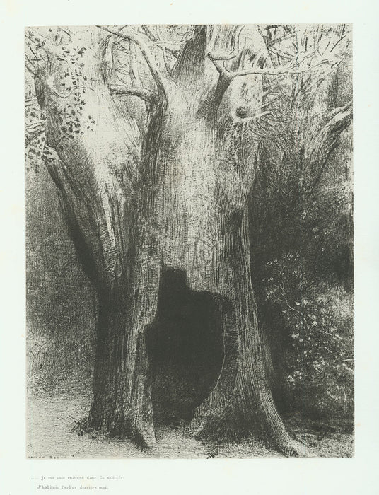 Odilon Redon - … I sunk into solitude.  I lived in the Tree behind Me. - main