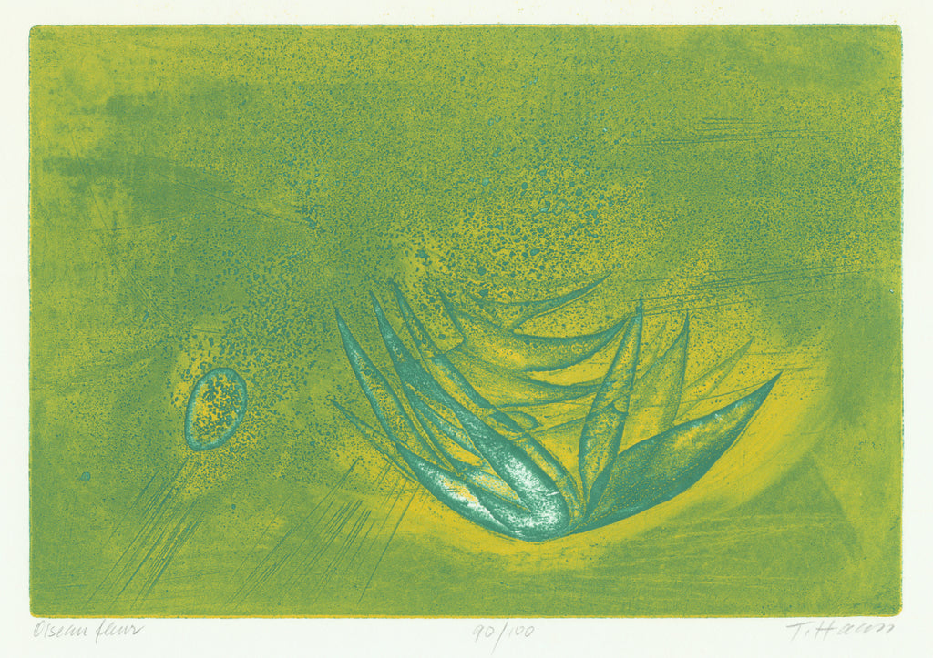Terry Haass - Oiseau Fleur - color aquatint viscosity print - flower bird