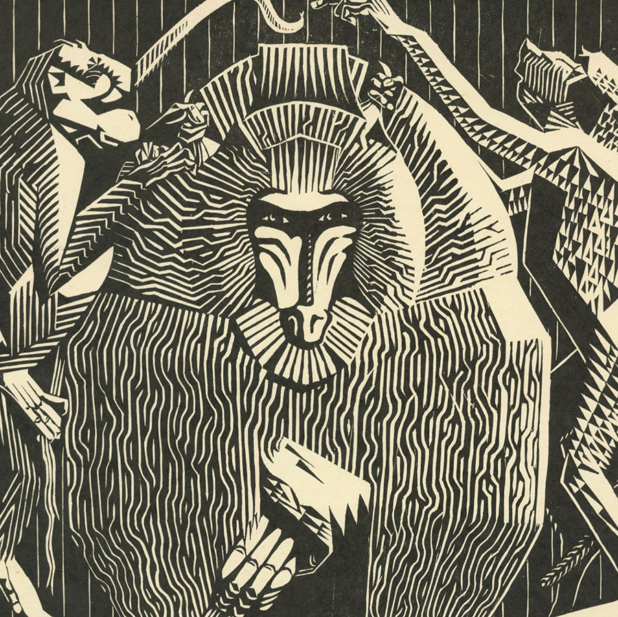 Victor Delhez - Singes - Monkeys - baboon - woodcut