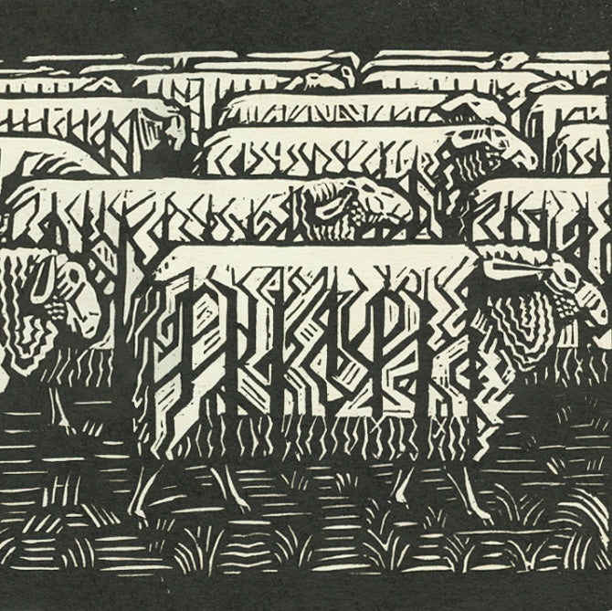 Victor Delhez - Troupeau de Mouton - Sheet Herd - woodcut  - detail