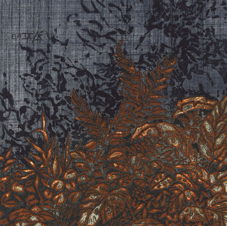 Yannick Ballif - Mato - Color intaglio - embossed - 1980 - detail