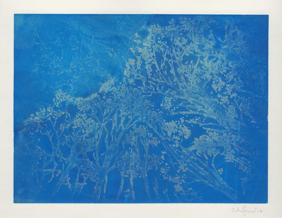 Color aquatint - by JERETIC, Anna - titled: Trees Against the Sky