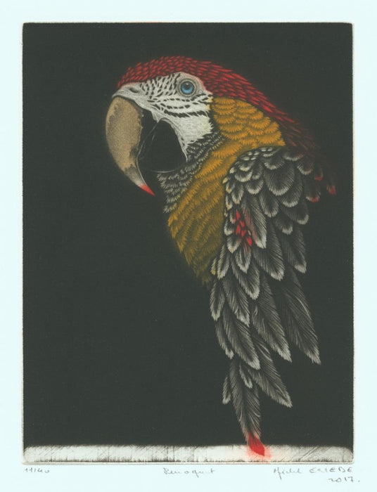Color mezzotint - by Estebe, Michel - titled: Parrot