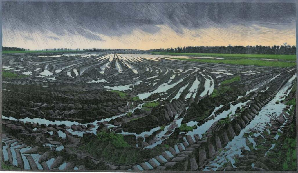 Color woodcut - by DIJKSTRA, Siemen - titled: Lost Field, third version