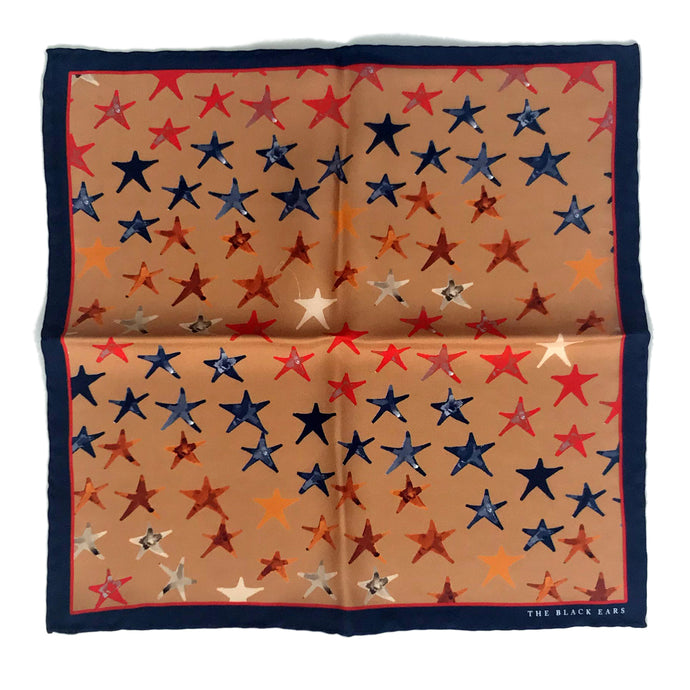 The Stars Silk Pocket Square - THE BLACK EARS