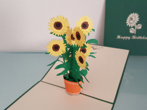 Birthday Sunflower