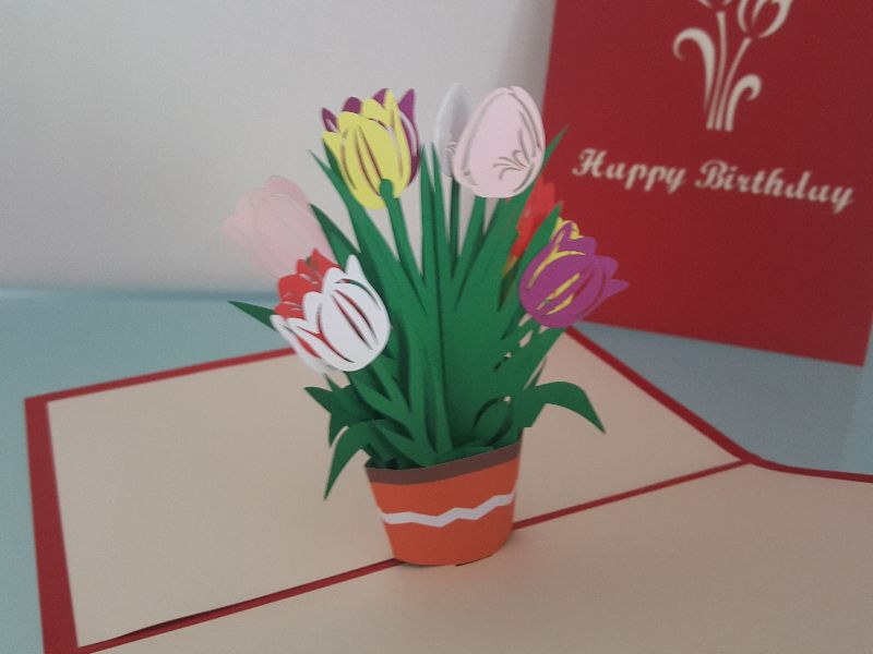 Happy Birthday Tulips