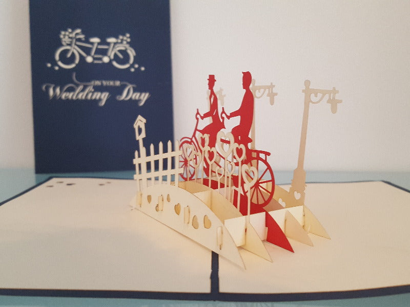 Bicycle Made for Two (Two Grooms)