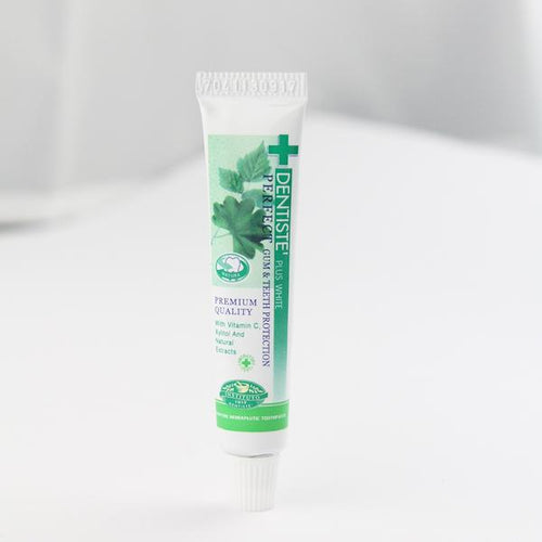 Dentiste' Nighttime Toothpaste (Sample)
