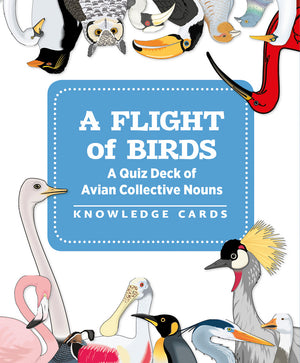 Flight of Birds: Quiz Deck of Avian Collective Nouns