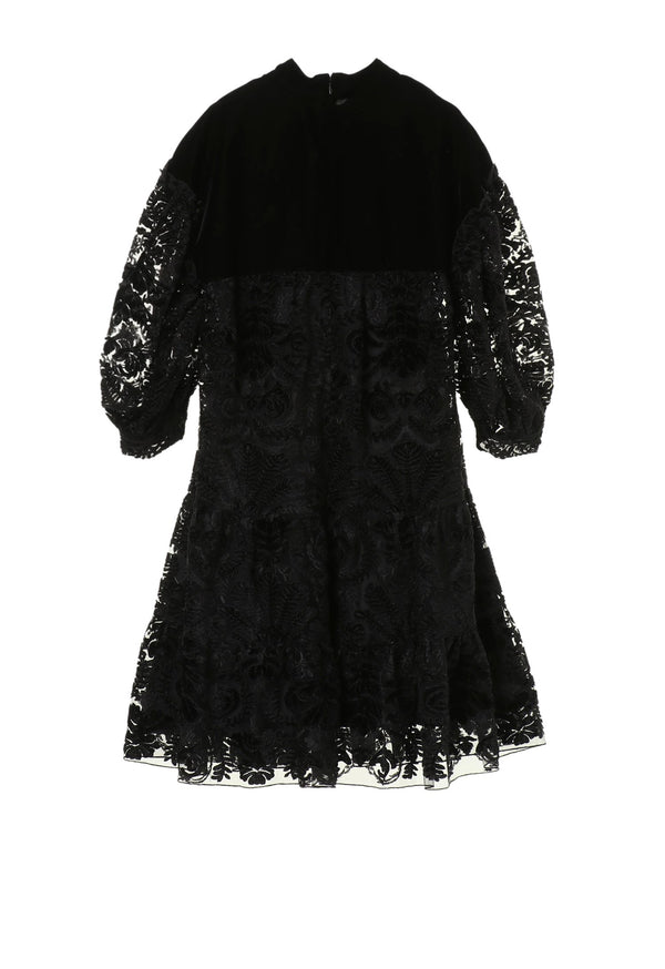 Lady In Black Lace & Velvet Dress
