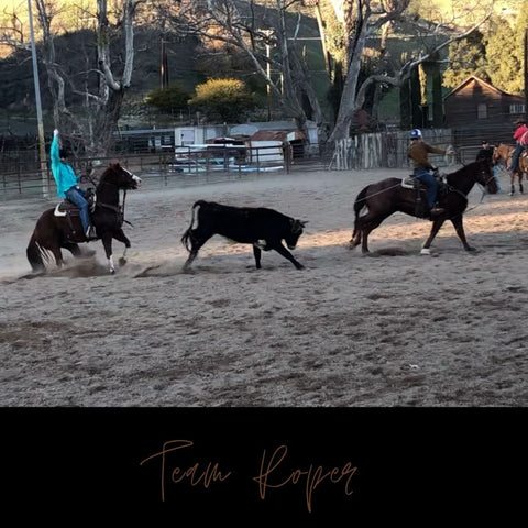 Team Roping - Hard Times - Ted Robinson Training Stables 2020