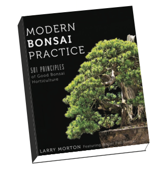Modern Bonsai Practice - 501 Principles of Good Bonsai Horticulture