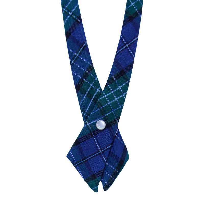 Navy/Green Criss-Cross Tie