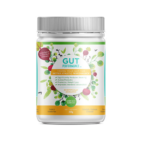Gut Performance - General Health / Vitamins - WholeSupps