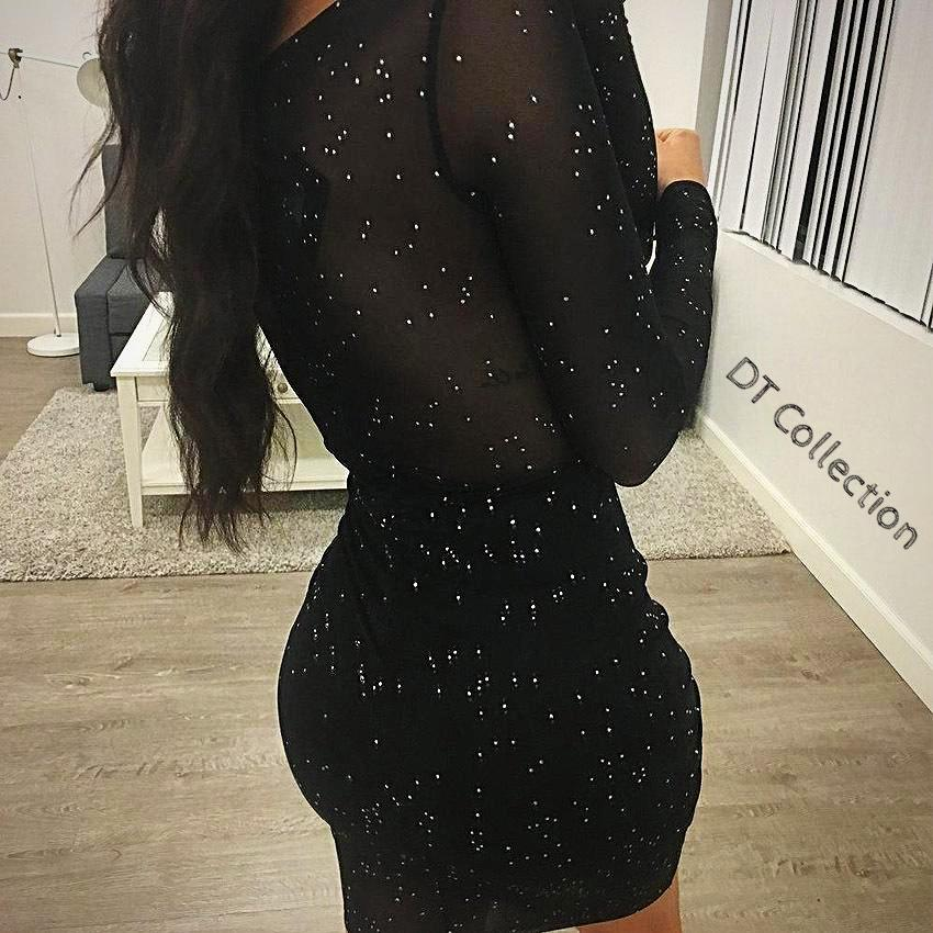 Sexy Sequin Mesh Dress Long Sleeve Lace