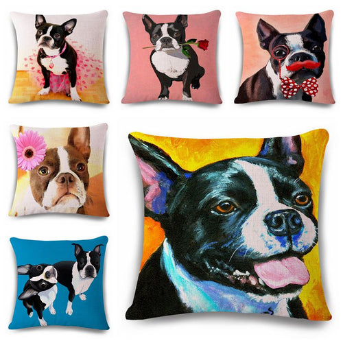 Adorable Boston Terrier Cushion Covers
