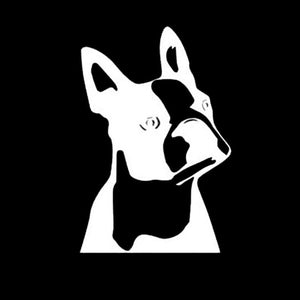 Boston Terrier Vinyl Car Decal