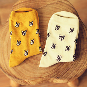 Boston Terrier Socks - Beige, Yellow