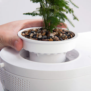 xiaomi-fish-tank-with-integrated-plant-3