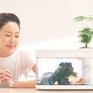 xiaomi-fish-tank-with-integrated-plant-4