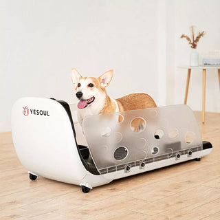 yesoul-smart-pet-treadmill-q1-2