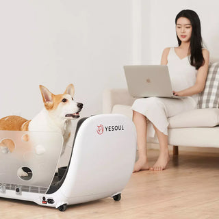 yesoul-smart-pet-treadmill-q1-4