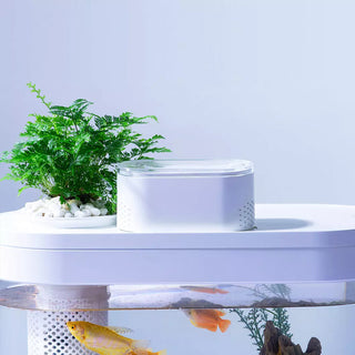 hfjh-smart-fish-tank-c180-pro-edition-20