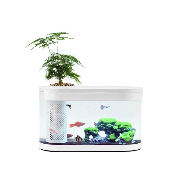 Xiaomi Fish Tank with Integrated Plant