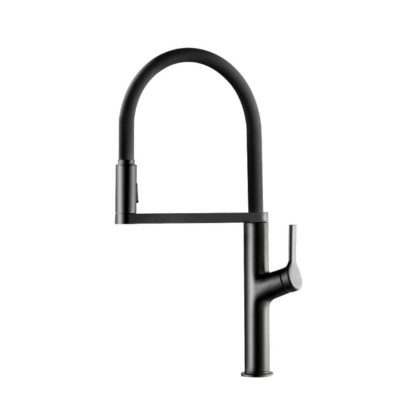 diiib Black U-Shape Kitchen Water Tap