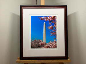 A Monumental Blossom - Signed Photography Print