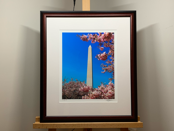 A Monumental Blossom - Signed Original