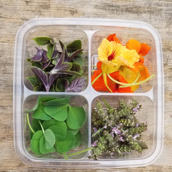 Garnish Sampler - Products change based on availability*
