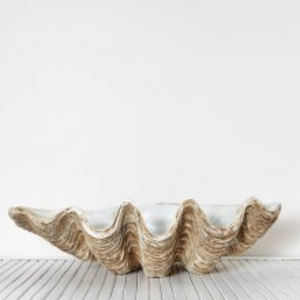 IMITATION CLAM SHELL - LARGE
