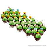 CM11 Peek-A-Boo Animals Sweetest Moments Full Month Birthday Mini Cupcake Buttercream Fondant Box of 30